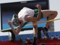 foroughi-kourosh-in-action-at-prelimary-rounds-of-the-high-jump-in-novi-sad-2009